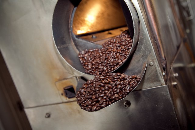 Journeyman Project: Luciano Repetto: Fluid Bed Roaster
